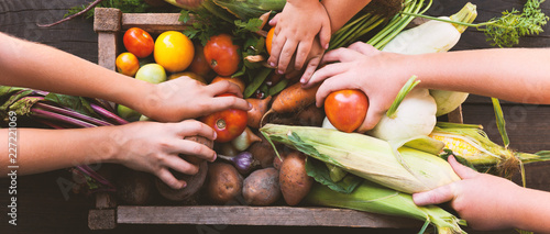 Tuinposter Groenten Organic farming harvest, fresh autumn dirt, root food.
