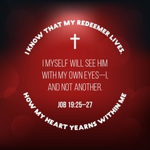 Bible Verse From Job
