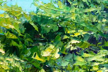 Green Bushes Leaves Palette Kn...