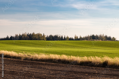 Autumn countryside with field, pasture, forest and blue sky