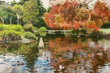 Photo Of A  Duck Pond In A Park In Autumn Modified To Look Like A Monet Painting