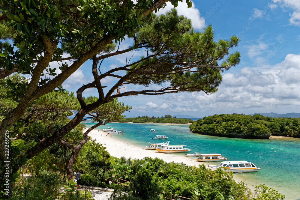 Fototapety, obrazy: 石垣島 川平湾周辺の景色