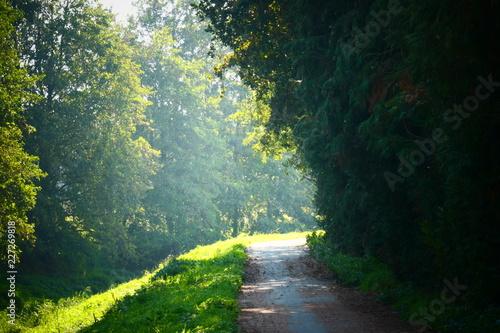 Fototapeten Natur Natuur gebied