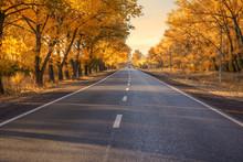 Autumn Road At Sunset