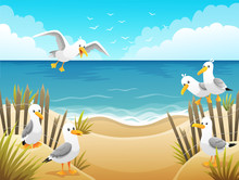 Scenery With Seagulls On Beach...
