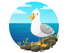 Cute Seagull On Rock Cliff Wit...