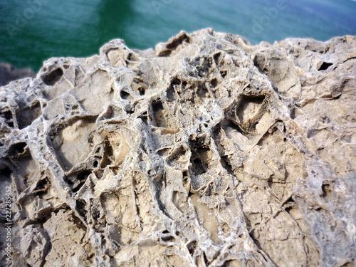 rocas en la bahía de Cadiz, Andalucía. España