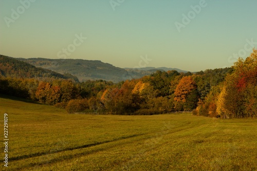 Fotobehang Olijf Rural countryside landscape of autumn and summer country.