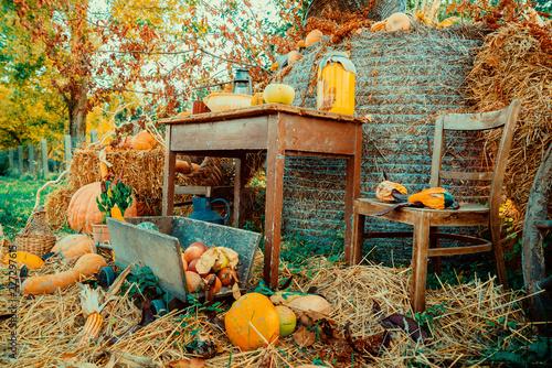 Plakat Jesień rocznika wystrój z baniami