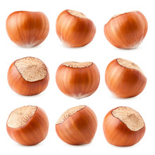 Hazelnut Isolated On White Bac...