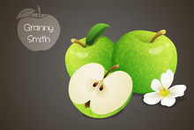 Granny Smith Apples Whole And Cut In Half With An Apple Blossom. Fruits Isolated On Grey Background. Vector Illustration.