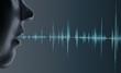 Leinwandbild Motiv 3d rendering head voice recognition system of blue ground