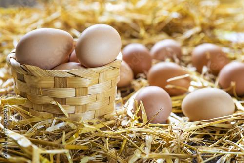 Fresh eggs in nest on straw at farm