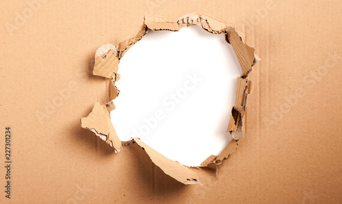 Fotomural  Cardboard with a hole - white background