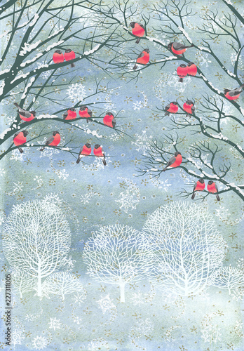 Composition from watercolor background with snowflakes and vector flock of bullfinches perching on the branches of a trees