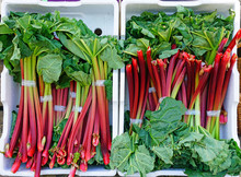 Crates Of Green And Red Rhubar...