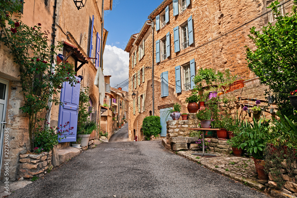 Fototapety, obrazy: Mane, Forcalquier, Provence, France: ancient alley in the old town
