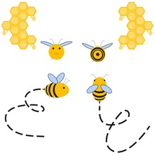 Busy Bee. Abstract Flying Honey Bee All Four Dimensions View And Tracks. Front, Top, Side, Back. View. Vector Illustration