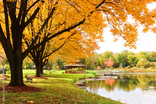 Poster Melon Midwest nature background with park view. Beautiful autumn landscape with colorful trees around the pond and wooden gazebo in a city park. Lakeview park, Middleton, Madison area, WI, USA.