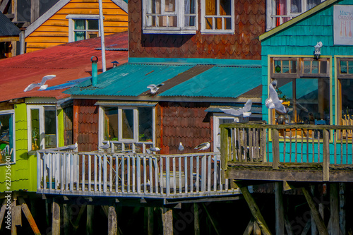 Fotografie, Obraz Houses on stilts palafitos in Castro, Chiloe Island, Patagonia