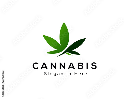 Cannabis leaf logo design Wallpaper Mural