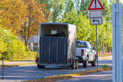 Photo Auto mit Pferdanhänger