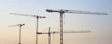 Silhouette Of Construction Cranes, Industrial Photo