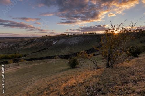 Canvas Prints Arizona autumn landscape with lambs