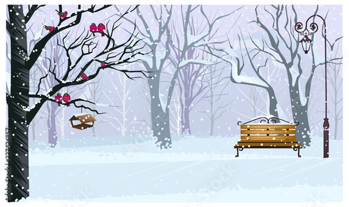 Winter landscape with snowy park vector illustration. Forest with bullfinches on tree, bench and streetlight. Town scene. Christmas or New Year concept. For websites, wallpapers, posters or banners