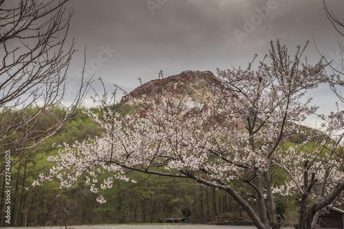 Staande foto Grijs Lake Toya landscape in hokkaido