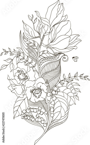 Drawing Flower Feather With Zentangle Style For Coloring Book