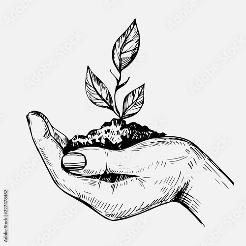 Hand hold plant. Hand drawn illustration converted to vector