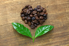 Heart Shaped Roasted Coffee Beans And Leaves, Fair Trade Concept Image Isolated On Wooden Background