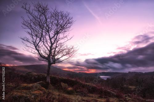 Dartmoor sunset devon england uk