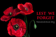 Remembrance Day Greeting Card....