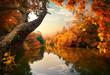 Leinwandbild Motiv Orange autumn on river
