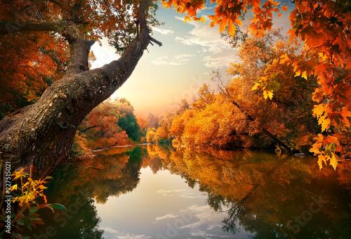 Fototapeta Piękna jesień na rzece, pejzaż obraz