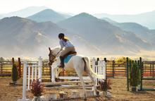 Jockey Riding Horse While Jumping Hurdle On Field