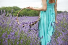 Woman With Basket Standing In Lavender Field