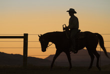 Silhouette Of Man Riding Horse At Sunset