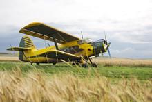 Biplane On Field