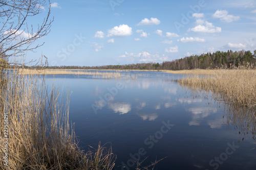Fotografía  Tranquil lake