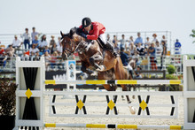 Rider On Horse Jumping Over Hurdle At Competition