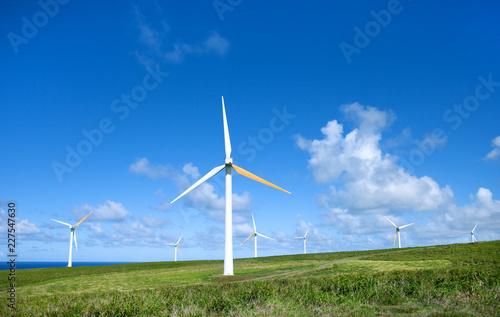 Fotografie, Obraz  Wind turbines