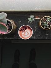 Pink Love Latte