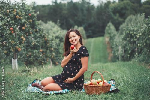Happy Healthy Pregnancy Portrait Of Pregnant Young Brunette
