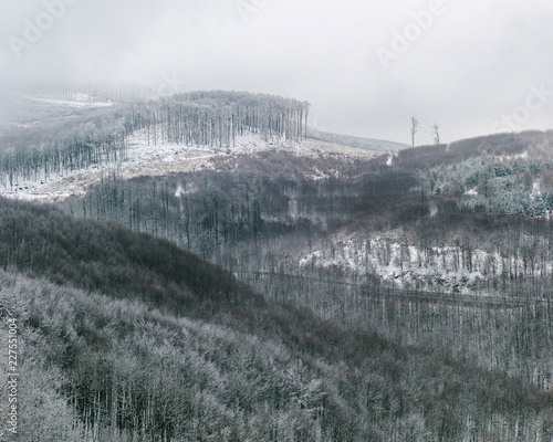 Winter hills covered with forest