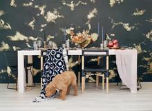 Modern Textured Wedding Details With Puppy Running