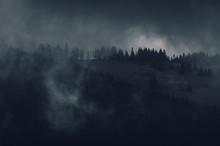 Dark Mountain Woods At Night