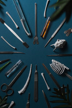 Surgical Instruments .